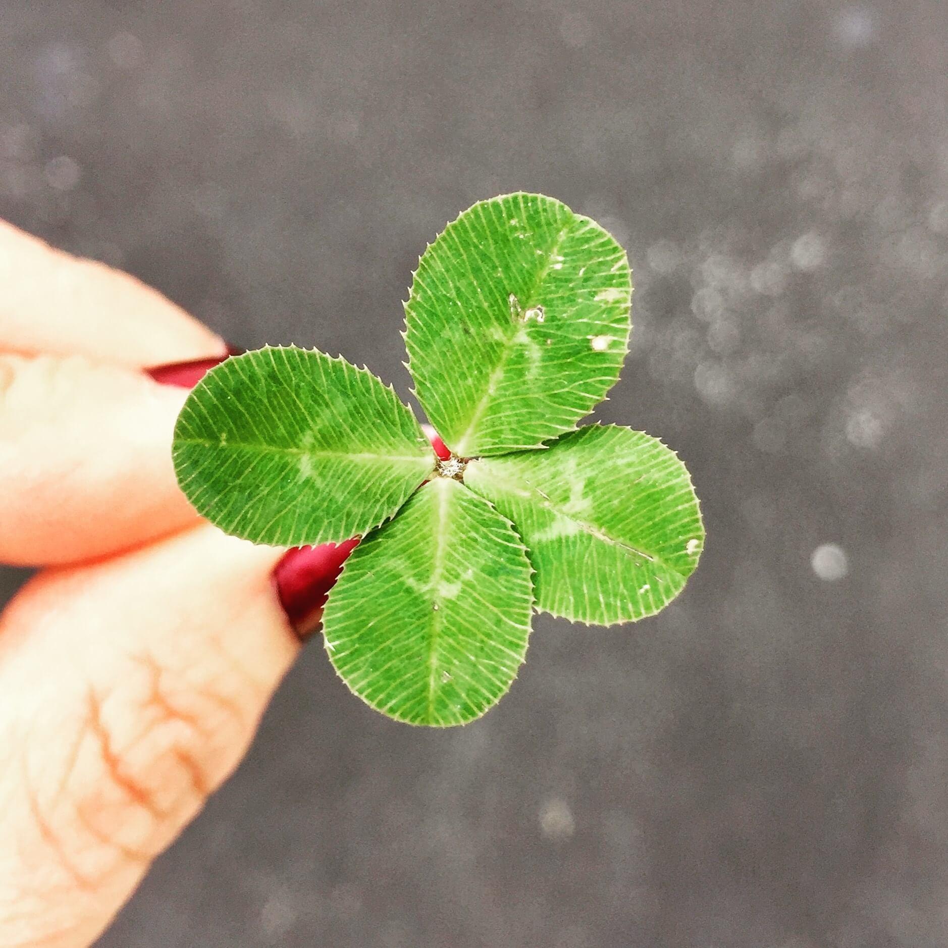 Sentirse con más suerte en nuestro dia a dia