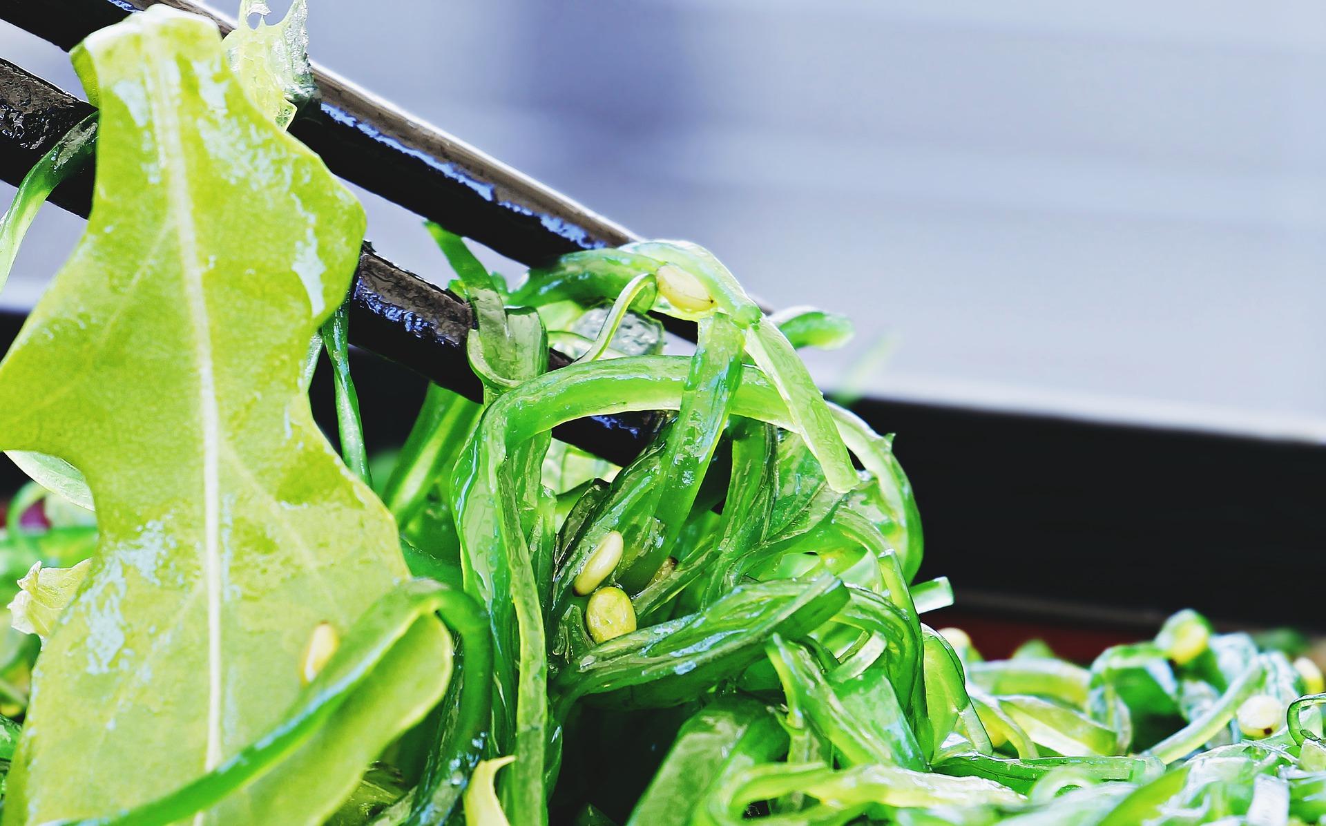 5 algas para cocinar de manera saludable